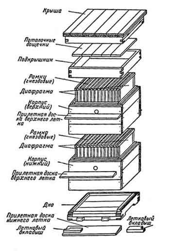 двухкорпусный улей, обычный одностенный 12-рамочный улей
