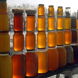 Из Грузии в Россию снова будет поставляться мед