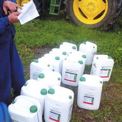 Вблизи Калининграда обработка полей химическими веществами привела к гибели насекомых и животных