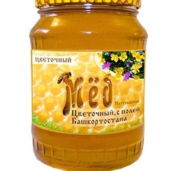 Существует вероятность исчезновения башкирской пчелы,  а вместе с ней и башкирского мёда